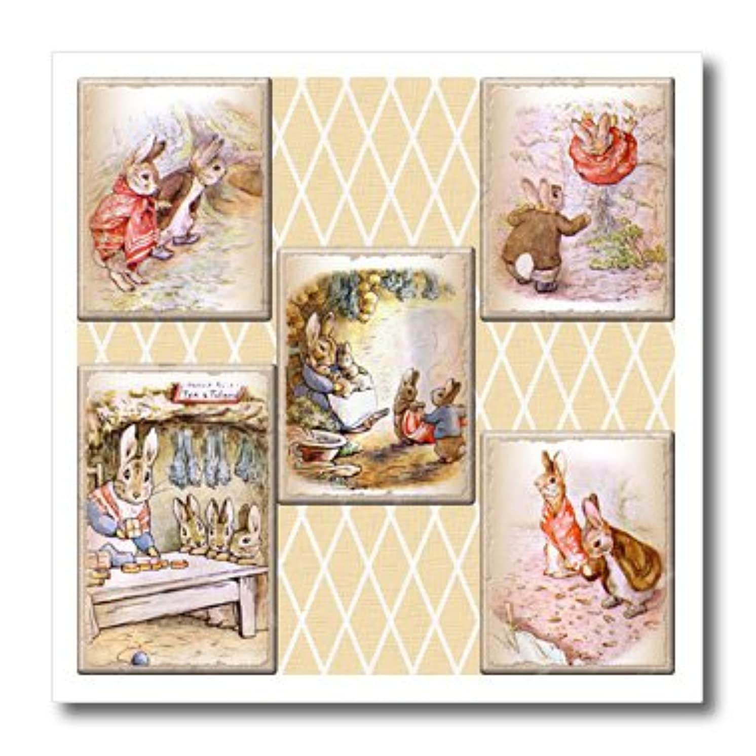 3dRose Peter Rabbit Vintage Collage Art- Stories-Iron on Heat Transfer, 8 by 8