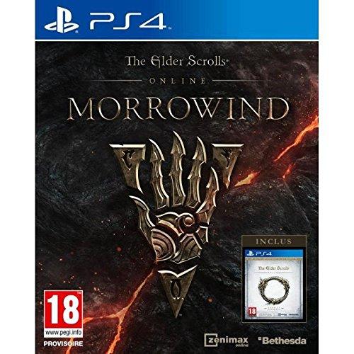 The Elder Scrolls Online : Morrowind - PlayStation 4 [Edizione: Francia]