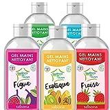 Gel Mains Nettoyant - Coloré et Parfumé - Avec Actif Nettoyant - (Lot de 5) - 75ml - Pomme, Fraise, Exotique, Menthe, Figue - Saisona - Cosmétique Naturel et écologique.