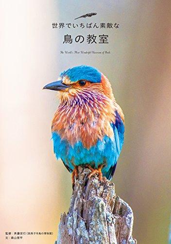 世界でいちばん素敵な鳥の教室 (世界でいちばん素敵な教室)