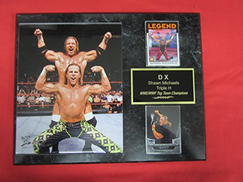 DX Shawn Michaels Triple H WWE 2 Card Collector Plaque w/8x10 Color Photo