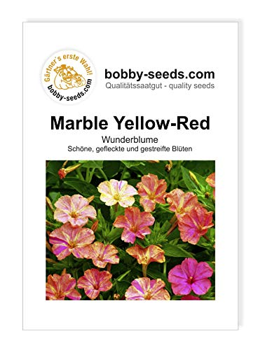 Mirabilis Marble Yellow-Red von Bobby-Seeds Portion