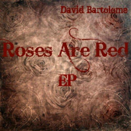 David Bartolome