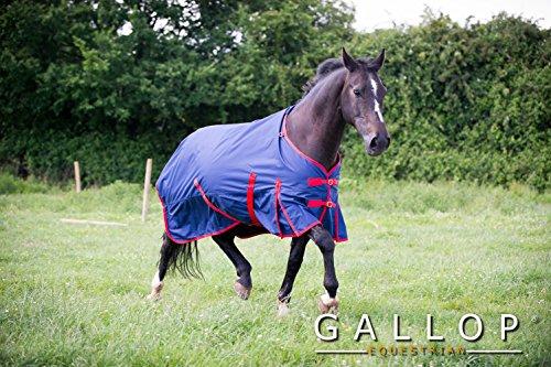Gallop Trojan - Manta de caballo sin cuello, 200g - EU 135cm