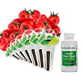 Miracle-Gro AeroGarden Red Heirloom Cherry Tomato Seed Pod Kit (7-Pods)