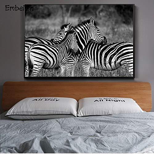 KWzEQ Imprimir en Lienzo Imagen de Arte de onhomewall Moderno Animal de cebra70x105cmPintura sin Marco
