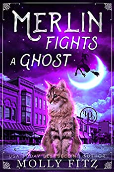 Merlin Fights a Ghost: A Hilarious Mystery with a Witchy Cat and his Human Familiar (Merlin the Magical Fluff Book 2) by [Molly Fitz]