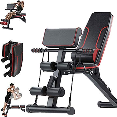 LJBOZ Hantelbank Klappbar, Standard Hantelbänke Verstellbare Hyperextension Roman Chair Trainer Bauchtrainer Bizeps Trainingsgerät WOERD