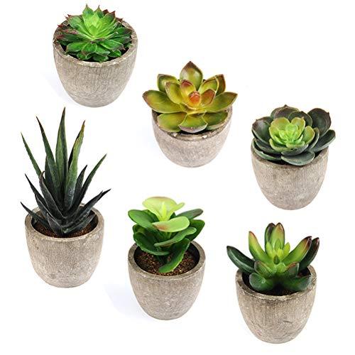 BUYGOO 6 Piezas Plantas Artificiales Suculentas en Macetas Natural Plástico Pequeñas Plantas Artificiales Decoración Interior para Su Hogar, Oficina