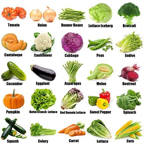 12500+ Organic Seeds Vegetable Fruit Seeds Emergency-Survival Garden Food Outdoor LivingOutdoor Living (25 Variety)