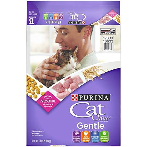 Purina Cat Chow Sensitive Stomach Dry Cat Food