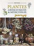 Plantes aromatiques et médicinales sauvages