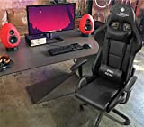 Casa Copenhagen Professional SS Gaming Chair with Ergonomic Lumbar Pillow Support Italian Leather...