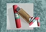 IMG-2 tusitala barcelona ventaglio dal design