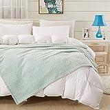 Throw Blanket (Mint Green, 50×60'')