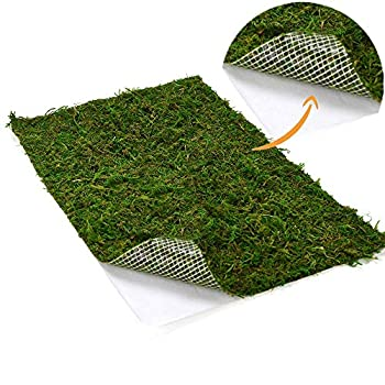 BYHER Dried Moss Mat for Wedding Birthday Party Fairy Garden Decorations Dark Green  Green - 14  X 9
