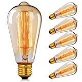 Vintage Edison Bulb,CMYK Dimmable 40W ST64 Antique Bulb Squirrel Cage Filament Light for Decorate...