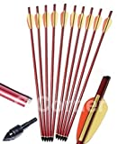 "10 x 16"" Anglo Arms Alloy Aluminum Crossbow Xbow Bolts Arrows With Steel Tip End"