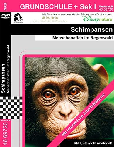 Schimpansen - Menschenaffen im Regenwald Nachhilfe geeignet, Unterrichts- und Lehrfilm