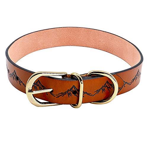 WWHPVP Collar de Perro de Cuero Real, Cuello Durable de la educación para Mascotas Pitbull Perritos Grandes Collares Ajustables para pequeños Perros Grandes Grandes,Marrón,38~48cm