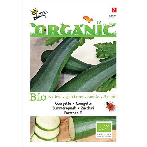 Buzzy® Organic Zucchini Partenon F1 (Cucurbita pepo)