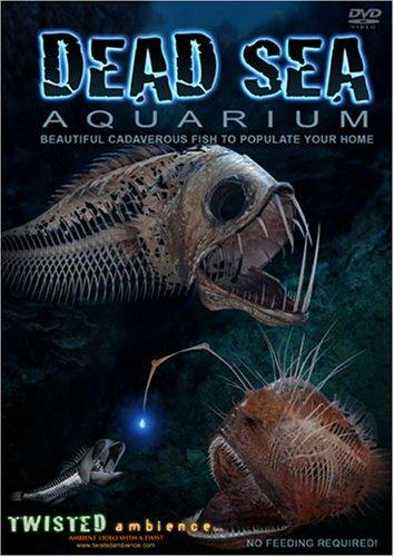 Dead Sea Aquarium