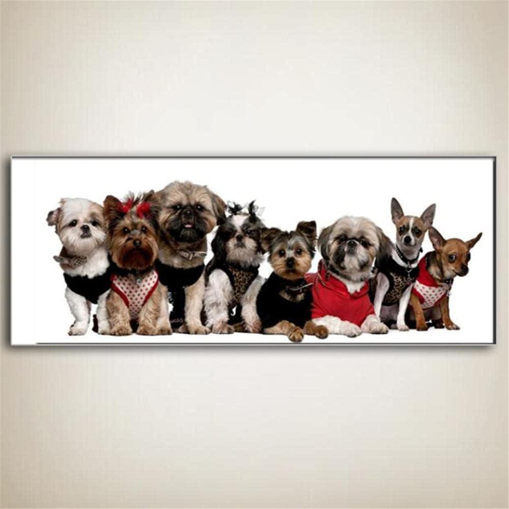 5D DIY Popular popular Diamond Painting Kits for Be Free shipping Animal Dog Adults Drill Full