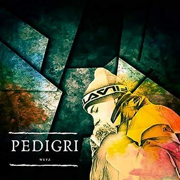 Pedigri