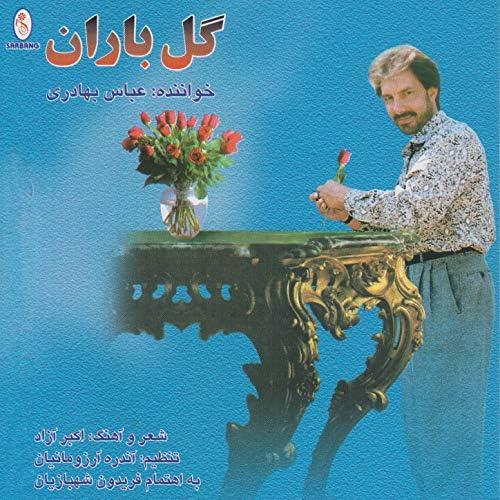 Abbas Bahadori