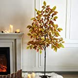 EAMBRITE 6FT LED Lighted Floor Standing Maple Tree with 144 Warm White LED Pre lit Artificial Fall Tree Plug in for Home Holiday Thanksgiving Birthday Wedding Party Decor