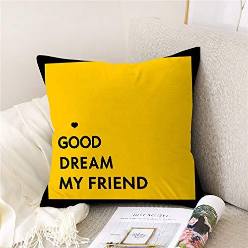 YUANYOU Peach Skin Velvet Cushion Covers, 18x18 Inch/45x45cm, Set of 4, for Room Car Sofa Throw Decorative Pillow Case