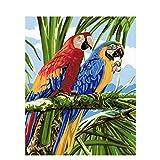 HJVBLCR Pintar por Numeros DIY Red and Blue Parrot Pintura por números con Festival cumpleaños hogar decoración de casa -16 * 20 Pulgadas Sin Marco