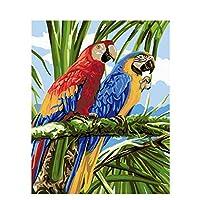 数字油絵 数字キット塗り絵 手塗り Diy絵 デジタル油絵赤と青のオウム-フレームレス 40* 50 Cm