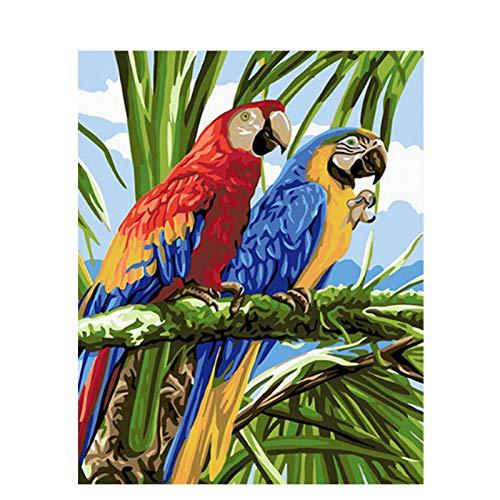HUA5D Malen Nach Zahlen Erwachsene Mit Rahmen 40X50Cm Papagei Handgemachte Farbe Leinwand Auf Leinwand Acryl Für Anfänger Kinder Handgemachte Kunst Geschenk