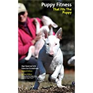 Puppy Fitness That Fits The Puppy: Age Appropriate Exercise Guidelines