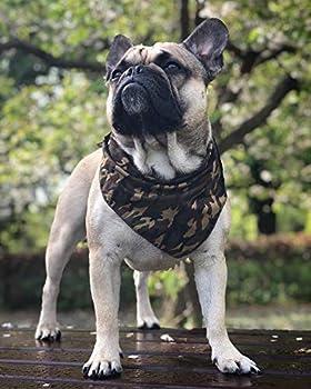 Pet Pooch Boutique Bandana pour Chien Taille S/M