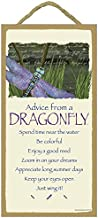 SJT ENTERPRISES, INC. Advice from a Dragonfly - 5