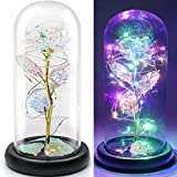 FLORECORD Beauty and The Beast Rose Gift Enchanted Colorful Led Flower Galaxy Rose Light in A Glass Dome, Unique Crystal Gifts for Valentine's Day, Mother's Day, Anniversary and Girl's Birthday