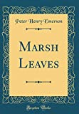 peter henry emerson - Marsh Leaves (Classic Reprint)