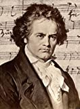 Gifts Delight Laminated 21x28 Poster: Ludwig Van Beethoven - What do Beethoven, pop Songwriters and Director Harmony Korine and You Have in Common