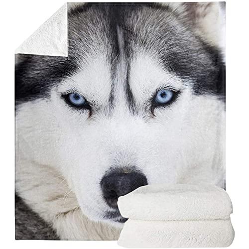 HUGS IDEA Luxury Faux Fur Throw Blanket Husky - Adorable Siberian Sled Dog...