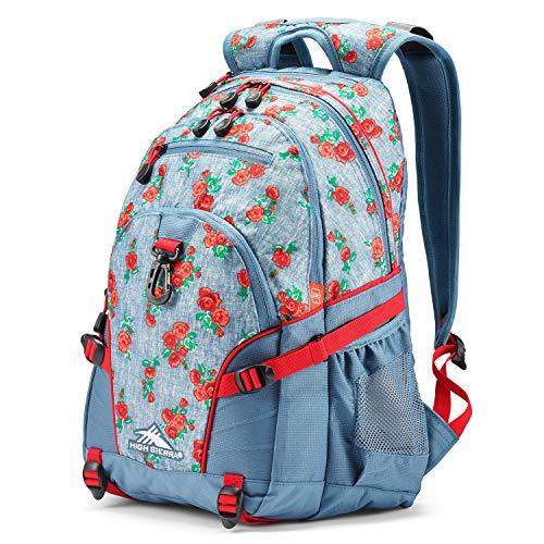 High Sierra Loop Backpack, Compact & Stylish Bookbag Perfect for Students, Office, or...