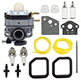 Savior 753-06258 Carburetor with 560873001 Air Filter for MTD 222C 222R 288B 365B Lawn Mower 25cc 25.4cc Ryobi RY252CS RY253SS RY251PH RY254BC String Trimmer 753-06258A
