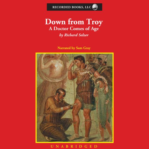 Down From Troy audiobook cover art