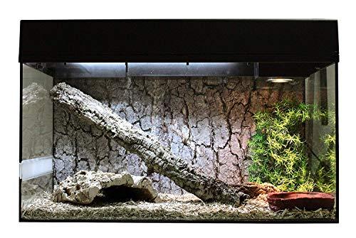 """Lucky Reptile Starter Kit 80 cm \""""Schlange\"""" schwarz, Terrarium-Komplettset für Kornnattern (Aufzucht), Hakennasennattern und andere kleinbleibende Schlangen"""