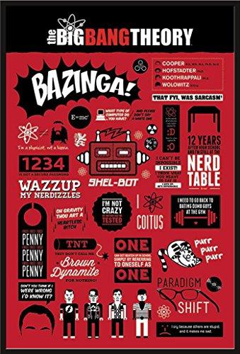 The Big Bang Theory - Infographic - FilmMaxi-Poster, Druck, Poster Kino Movie TV-Serie Kindersendungen - Grösse 61x91,5 cm + Wechselrahmen, Shinsuke® Maxi Kunststoff schwarz, Acryl-Scheibe