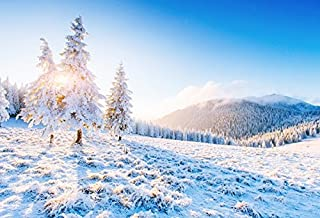 Baocicco Snow Ice Freezing Pine Mountain Winter Scene Backdrop 7x5ft Photography Background Sunshine Morning Wonderland View Snow Field Children Holiday New Year Festival