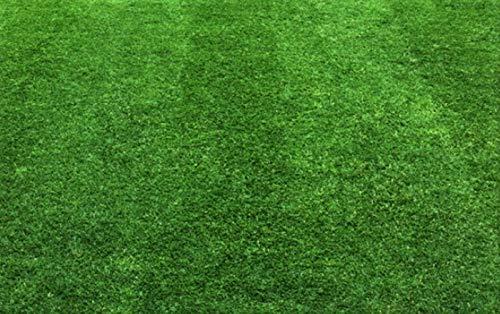 Müller GmbH 25 kg Rasensand Gartensand Rasenpflege lehmfrei Düngehilfsstoff Körnung 0,8-1,6 mm