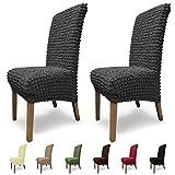 SCHEFFLER-Home Stretch Stuhlhusse Julia, 2er Set elastische Stuhlabdeckungen, Stuhlhussen Schwingsthle, Spannbezug mit Gummiband und Schnrband, Elegante Stuhlbezge