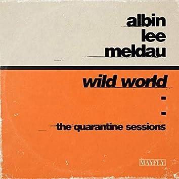 Wild World (The Quarantine Sessions)